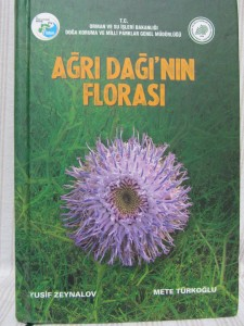 agri dagi